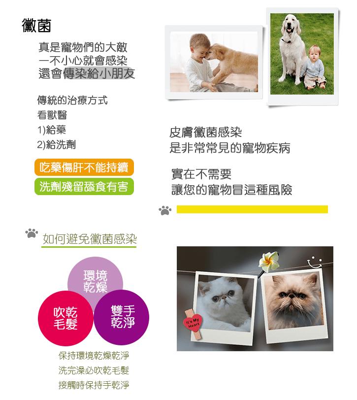 web-index-04-01-1
